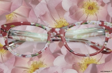 FW14 Eyewear Archive I DOLCE & GABBANA ALMOND FLOWERS DG 3203 Red Peach Flowers (2845)